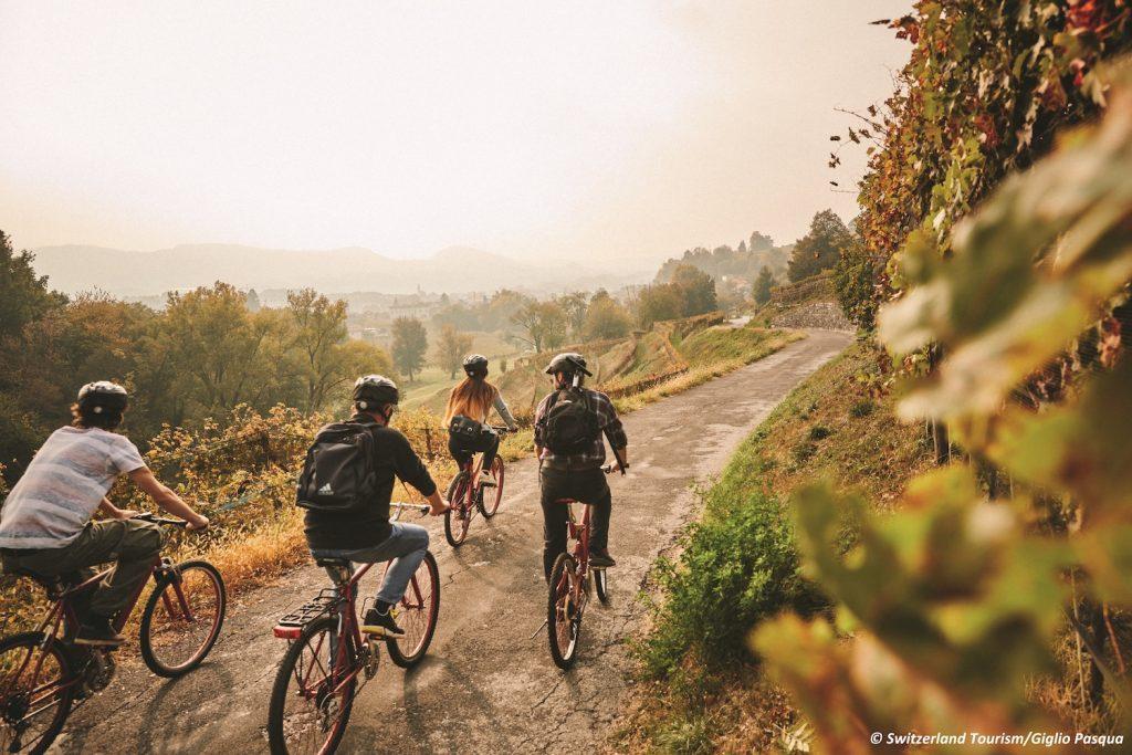 bike n wine